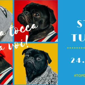 Il 24 giugno seconda tappa del top dog